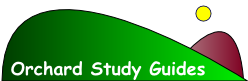 Logo for Interactive Advanced Accounting Study Guide